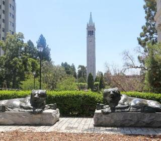 Only in Berkeley: Hidden Gems and Local Picks